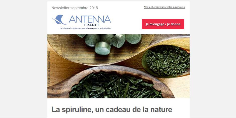 Newsletter Antenna