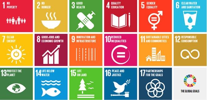 objectifs du développement